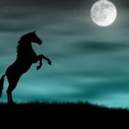 2014 – Годината на Синия дървен кон – подходяща за сключване на брак!