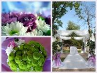 Сватбата на Мариета и Жоро 14