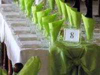 Сватбата на Делина и Генчо 8