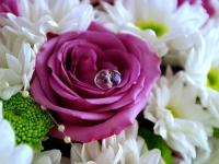 Романтика в лилаво